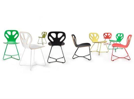 Krzesła Maple Iker